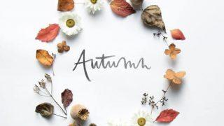 Autumn Elegant Design 2021